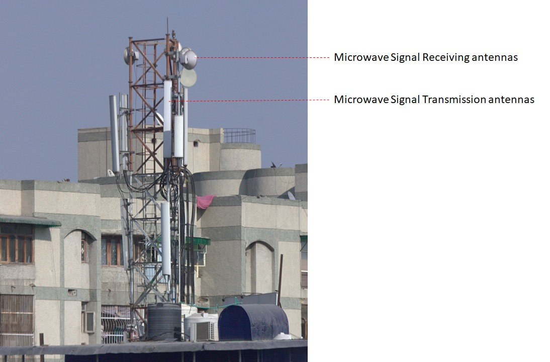 What is the safe distance from a mobile phone tower?